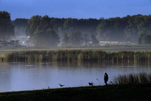 Haarlemmer Ringvaart, 2020